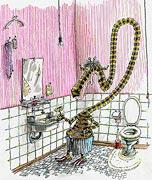 Cartoon: Die erste Rasur